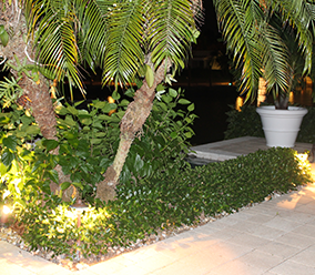 Installation of Landscape and Dock Lighting Systems